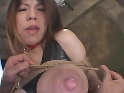 Japanese Big Tits School