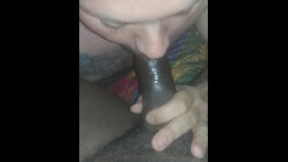 guy sucks hard black cock